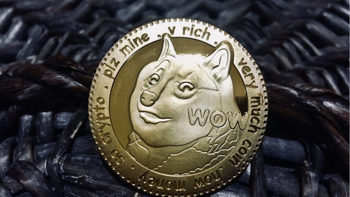 Anonymous Dogecoin Holder Donates Profits to a Dog Shelter in Florida