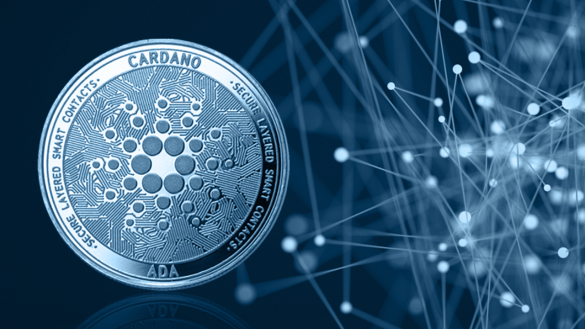 Cardano's Cfund First Capital Goes to Israeli Fintech Startup Coti