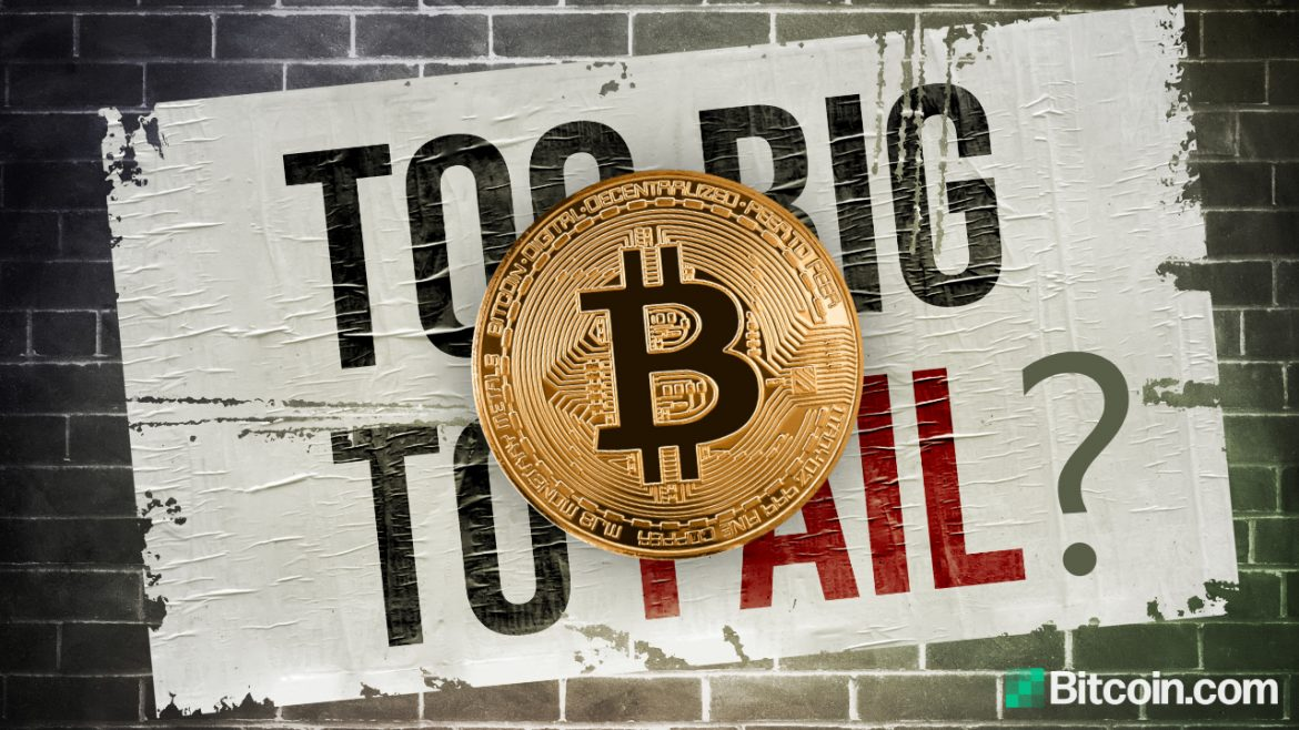 Economist Says Bitcoin Isn't Too Big to Fail — Warns BTC Can Only Establish Itself if Governments Allow It