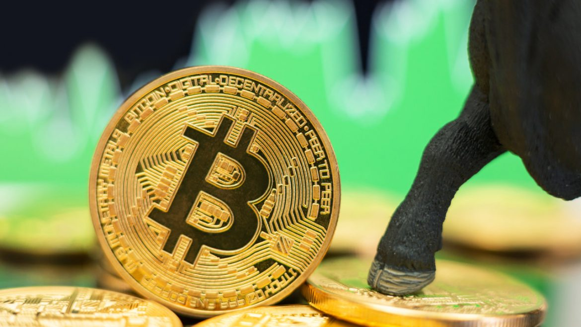 Analyst Predicts 'Refreshed Bull Market' for Bitcoin, Price Heading Toward $100K